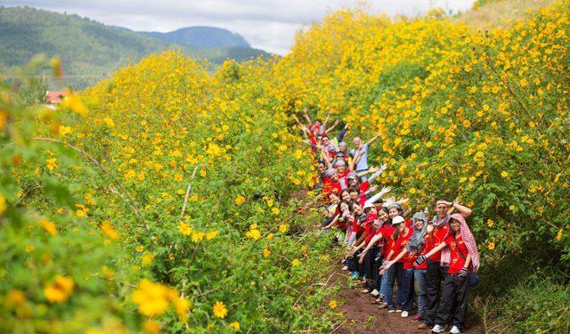 Các bạn trẻ tạo dáng đáng yêu trên những con đường kín hoa dã quỳ tại Đà Lạt